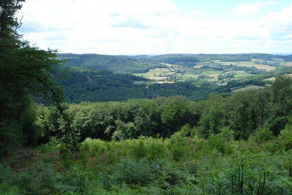 Le Parc Naturel Régional du Morvan
