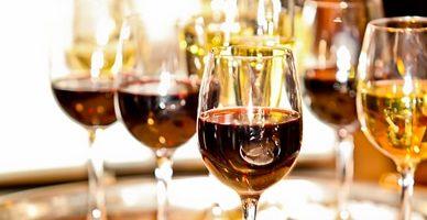 Les vignobles au fil de l'eau